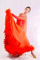 歌舞升平 国标舞裙