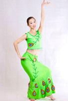 柳枝碧绿 傣族服装