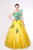 黄绿 长款晚礼服