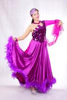 神秘紫色 国标舞裙