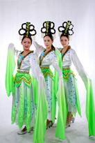 2014新款古典舞服